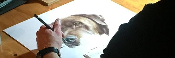 Brown Labrador full colour headshot in pencil crayon